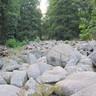 Kőtenger Odenwaldban